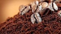 TT cà phê ngày 02/7: Giá arabica đã tăng 4 phiên liên tiếp