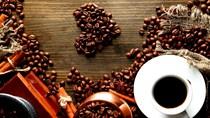 TT cà phê ngày 08/01: Dứt đà giảm, giá hồi phục trở lại 200 đồng/kg