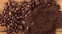 TT cà phê ngày 12/3: Giá sụt giảm khi WHO công bố Covid-19 là đại dịch toàn cầu