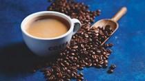 Giá cà phê tuần 36 (06/9 - 11/9): Dự báo có mưa tại Brazil khiến giá đảo chiều sụt giảm