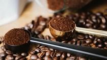 Giá cà phê hôm nay 12/6: Thị trường nội địa tăng nhẹ theo sàn London