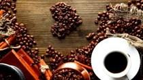 Thị trường đường, cà phê, ca cao thế giới ngày 09/11/2017