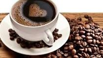 Giá cà phê trong nước ngày 29/11/2017
