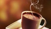 Nông sản TG ngày 17/5: Ca cao hồi phục từ mức thấp nhiều tuần, đường và cà phê tăng