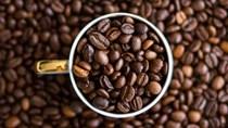 TT cà phê ngày 16/6: Dự báo của USDA về tình hình cung – cầu khiến giá sụt giảm