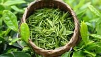 TT nông sản ngày 26/6: Chè Việt Nam xuất khẩu sang Mỹ tăng cả lượng và trị giá