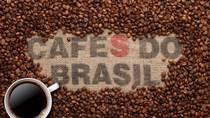 Giá cà phê tuần 42 (18/10 – 23/10): Một số quốc gia sản xuất cà phê đang xem xét rút ra khỏi ICO