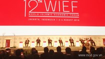 Thứ trưởng Đỗ Thắng Hải tham dự Diễn đàn KT thế giới các nước Hồi giáo lần thứ 12