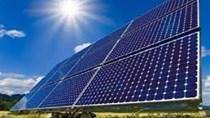 Giảm dự báo năng lượng mặt trời toàn cầu khi Trung Quốc cắt giảm chính sách hỗ trợ