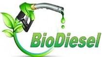 EU dự định áp thuế nhập khẩu với diesel sinh học của Indonesia