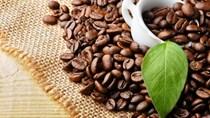 Cà phê châu Á: Giá tại Việt Nam tăng do nguồn cung ở mức thấp