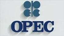 OPEC dự đoán dư thừa dầu mỏ năm 2020 sẽ giảm đi