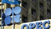 Các nhà đầu tư dầu mỏ vẫn tiếp tục đợi quyết định của OPEC