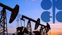 OPEC+ có thể xem xét kết thúc thỏa thuận giảm sản lượng trong năm 2020