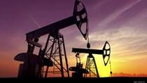 TT năng lượng TG ngày 30/1: Giá dầu giảm, khí tự nhiên xuống thấp nhất 4 năm