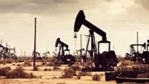 Các công ty dịch vụ dầu mỏ bi quan về triển vọng năm 2020