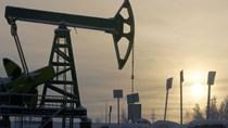 Baker Hughes: Các nhà khoan dầu Mỹ bổ sung giàn khoan trong tuần qua
