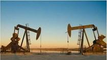 EIA: Sản lượng dầu thô của Mỹ năm 2020 giảm ít hơn so với dự báo trước đây