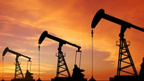 Giá dầu bước vào vùng nguy hiểm cho người tiêu dùng