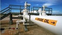 Các dự án dầu của Mỹ bắt đầu chùn bước do các nhà sản xuất hạn chế chi tiêu