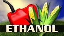Brazil tăng hạn ngạch nhập khẩu ethanol miễn thuế, nhưng chỉ một năm