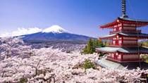 Tăng trưởng hoạt động sản xuất của Nhật Bản ở mức thấp nhất trong 2 năm