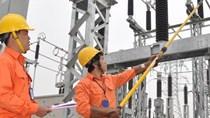 'Không thể thực hiện đồng nhất một giá điện tại Việt Nam'