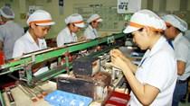 Ngành công nghiệp hỗ trợ Việt Nam hấp dẫn các doanh nghiệp Nhật Bản