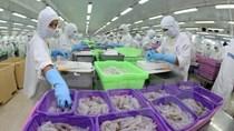 Kim ngạch thương mại Việt Nam - Braxin dự kiến đạt 4 tỷ USD năm 2015