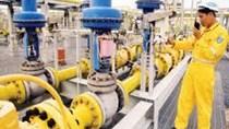 GAS lãi riêng lẻ quý II đạt 2.592 tỷ đồng, giảm 15% do giá khí giảm