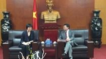 ADB viện trợ 500.000 USD tái cấu trúc ngành điện Việt Nam