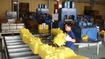 Tuần 10/8-14/8: Trung Quốc phá giá nhân dân tệ, giá cao su đồng loạt giảm mạnh