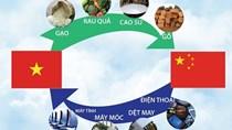 Trung Quốc phá giá nhân dân tệ, nhập siêu Việt Nam sẽ tăng lên