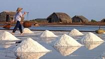 Giá muối còn 500 đồng/kg, diêm dân miền Trung tính chuyện bỏ nghề