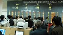 Đã có thêm 112 nhà đầu tư nước ngoài được cấp mã giao dịch trong tháng 7