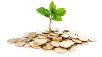 Hoa Sen muốn bán toàn bộ 4,48 triệu cổ phiếu quỹ để bổ sung vốn hoạt động