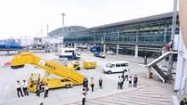 Nội Bài Cargo 9 tháng lãi 254 tỷ đồng, EPS đạt hơn 10.000 đồng/cp