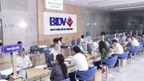 BIDV lãi trước thuế 5.535 tỷ đồng sau 9 tháng