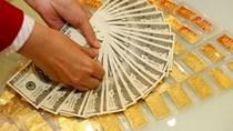 Giá vàng hôm nay 19/11 phục hồi nhẹ, giá USD ổn định