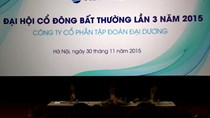 ĐHCĐ OGC: Giữ lại dự án 25 Trần Khánh Dư, không hủy niêm yết