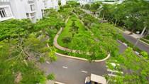 """Nhà phát triển dự án BĐS thường """"làm lơ"""" với mảng xanh"""
