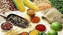 Giá lương thực  toàn cầu tiếp tục giảm do tăng trưởng chậm lại