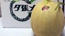 """Ăn một quả mất luôn...xe hơi, loại trái cây này chỉ dành cho """"người chịu chơi"""""""