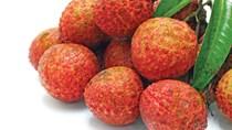 TT hoa quả tuần qua: dự báo giá vải thiều Lục Ngạn sẽ tăng 20%