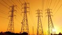 TCTy Điện lực TP. HCM: Tăng cường đẩy mạnh các chương trình tiết kiệm điện