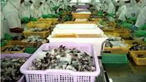Doanh nghiệp Việt vẫn thờ ơ với phòng vệ thương mại