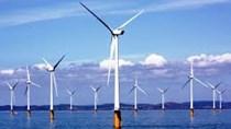 Giá điện gió Cà Mau là 9,8 UScents/kWh