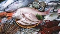 Tình hỉnh sản xuất và nuôi trồng thủy sản quý I/2017