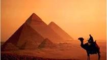 Tăng cường xúc tiến thương mại Việt Nam – Ai Cập