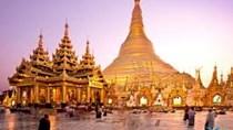 Sắt thép tiếp tục là mặt hàng chủ lực xuất khẩu sang thị trường Campuchia